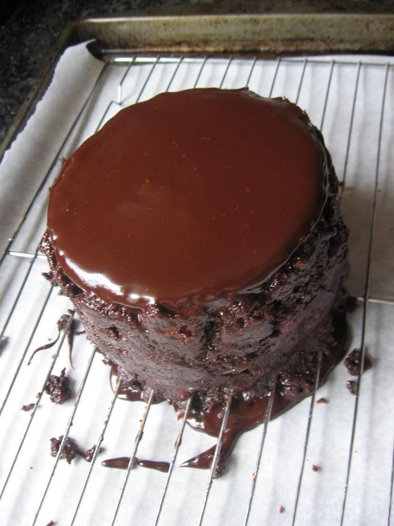 Dog Just Ate Chocolate Cake