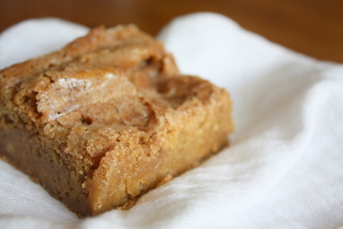 Buttery blondie bars with a cinnamon sugar swirl