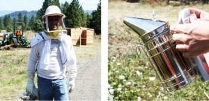 honey-harvest-4