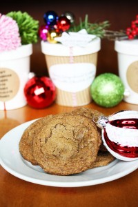 chewy-gingerbread-cookies-double-chocolate-chunks-1