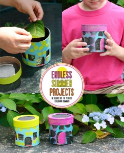 Endless summer projects bug houses