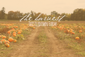the-harvest-thistledown-farm