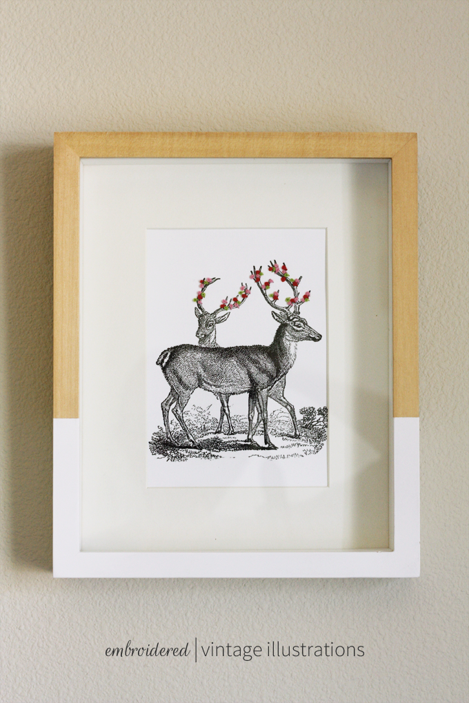 embroidered vintage illustrations atnthropologie