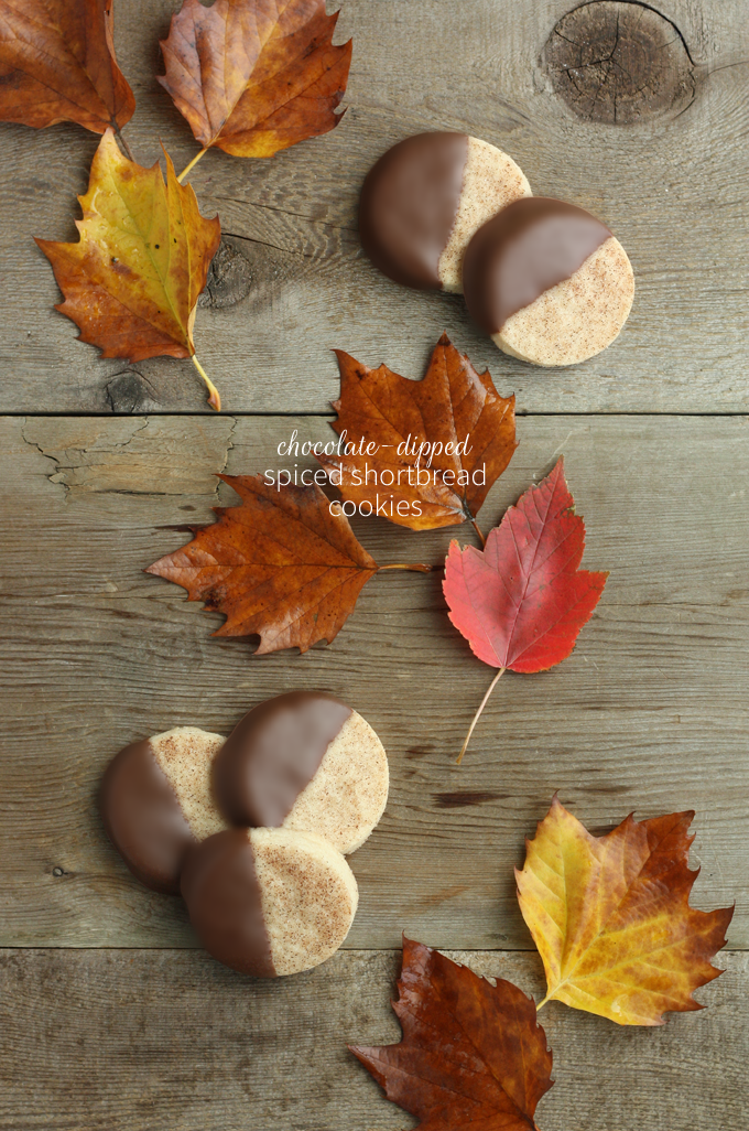 Fall wedding favors chocolate dipped spiced shortbread cookies minted julep