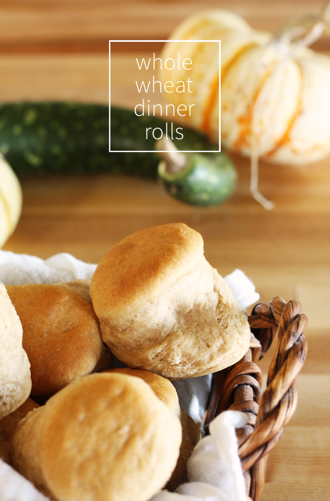 thanksgiving dinner whole wheat whole grain rolls