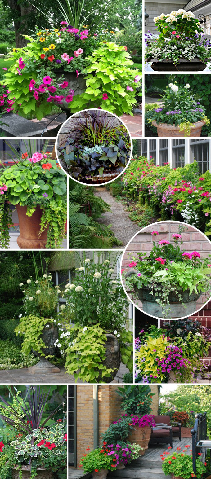 front porch planter container garden inspiration