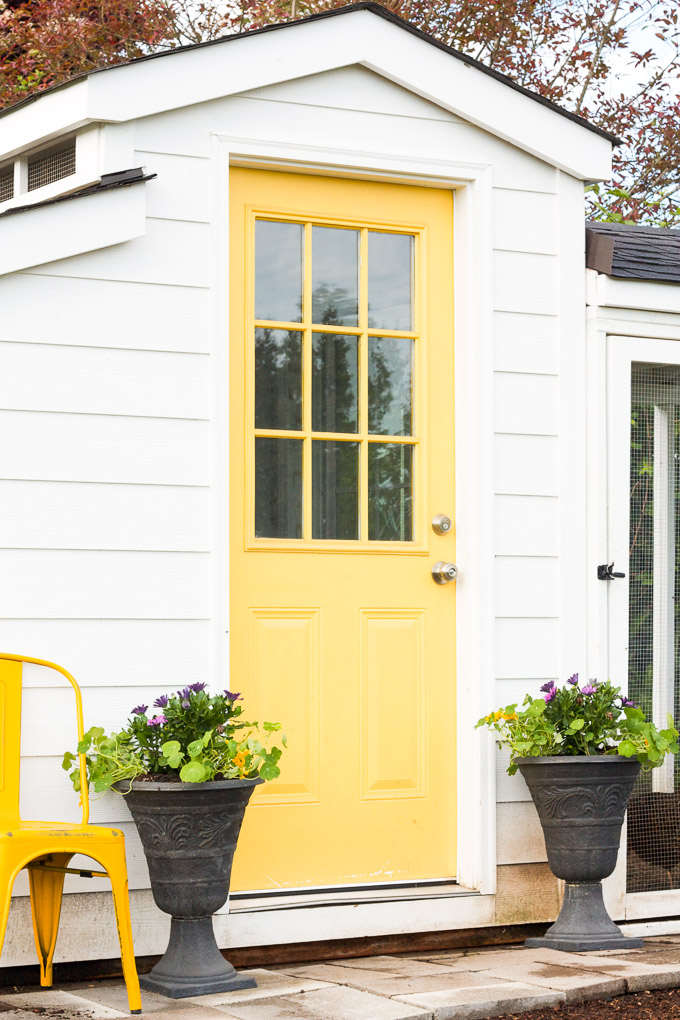 A white country cottage chicken coop with a sunny yellow front door