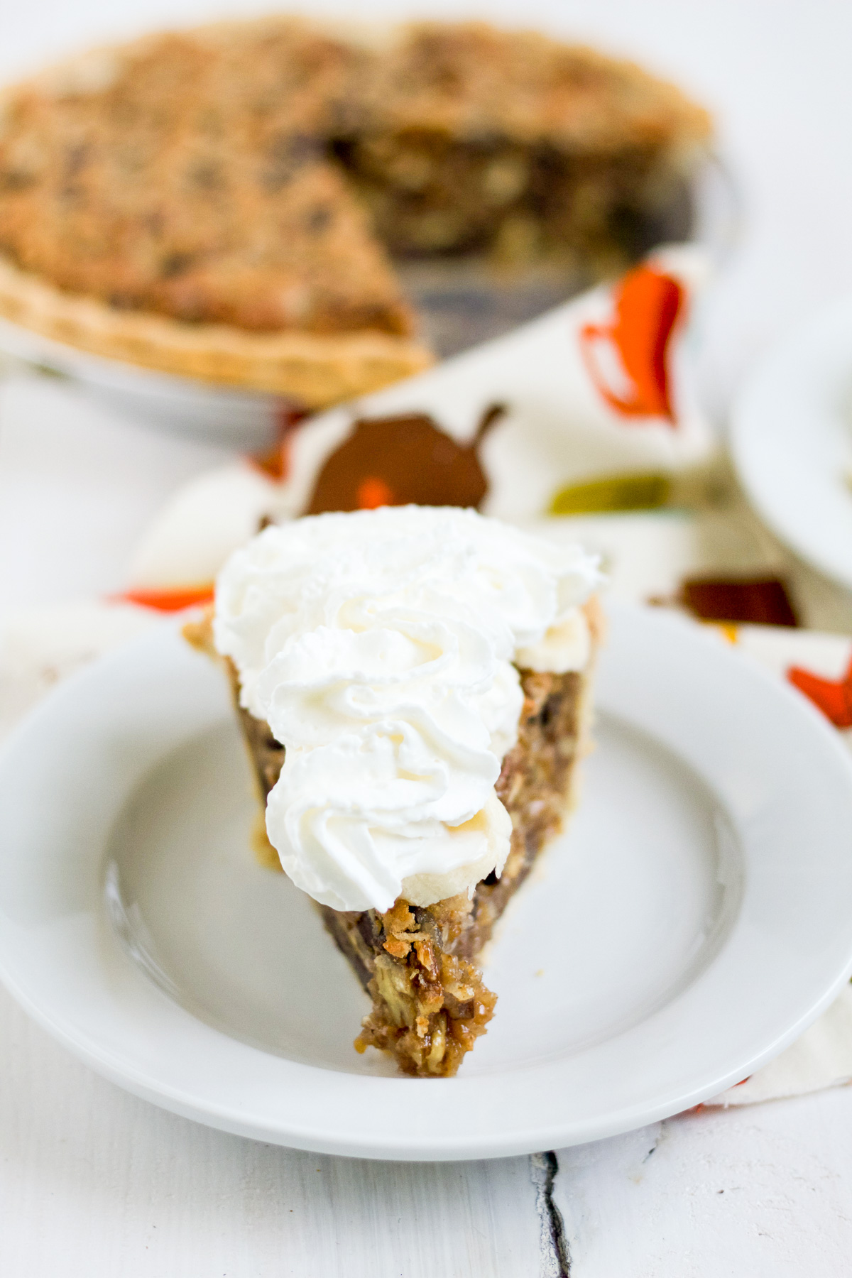 Coconut, chocolate chips, pecans, and graham crackers make this pie delicious!