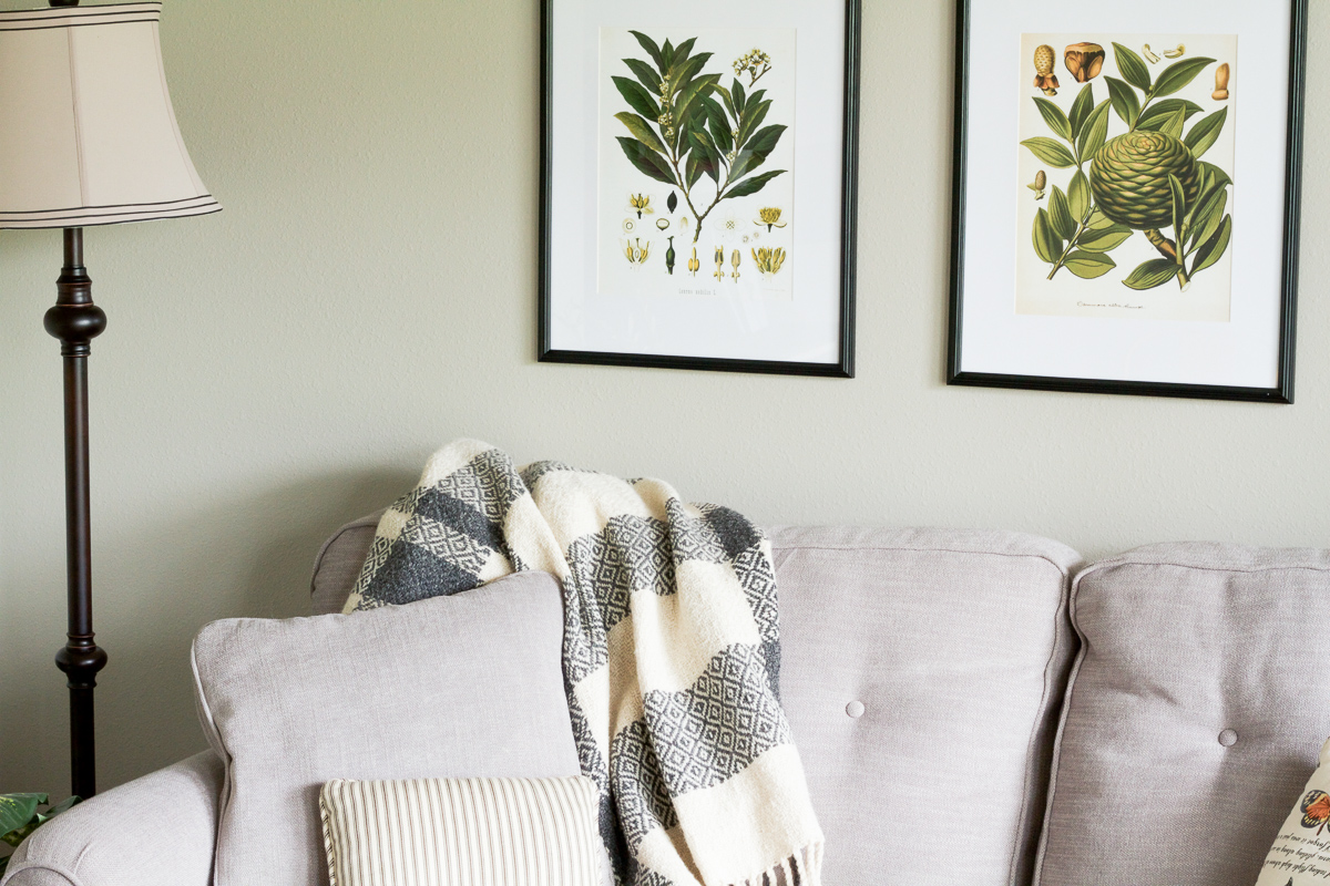 A naturalist living room makeover for the Spring 2017 One Room Challenge | botanical prints, neutrals, and lots of plants