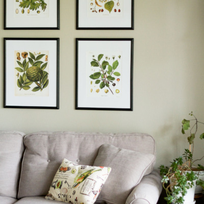 A Naturalist Living Room Makeover For The Spring 2017 One Challenge