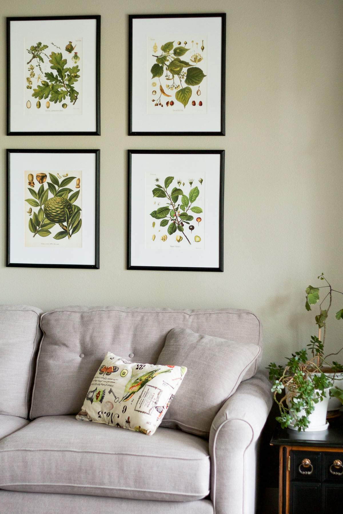 Beau A Naturalist Living Room Makeover For The Spring 2017 One Room Challenge |  Botanical Prints,